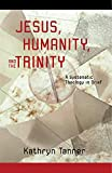 Jesus Humanity, and the Trinity: A Brief Systematic Theology