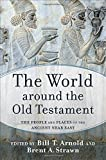 The World around the Old Testament: The People and Places of the Ancient Near East` book cover