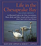 life in the chesapeake bay by alice jane
