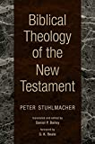 Biblical Theology of the New Testament book cover