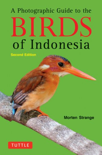A Photographic Guide to the Birds of Indonesia: Second Edition - Morten Strange