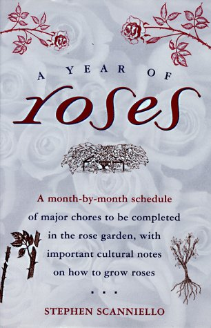 A Year of Roses, Scanniello, Stephen