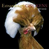 Extraordinary Chickens Wall Calendar: 2005