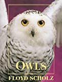 Owls: An Artist's Guide to Understanding Owls