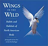 Wings in the Wild: Habits and Habitats of North American Birds