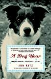 Jon Katz: A Dog Year