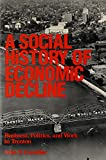 A Social History of Economic Decline: Business, Politics, and Work in Trenton