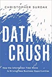 Buy Data Crush: How the Information Tidal Wave is Driving New Business Opportunities from Amazon