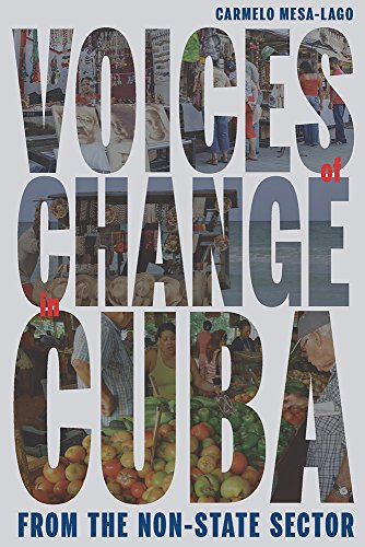 Voices of Change in Cuba from the Non-State Sector [Paperback]