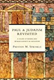Paul and Judaism Revisited: A Study of Divine and Human Agency in Salvation book cover