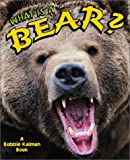 What is a Bear?