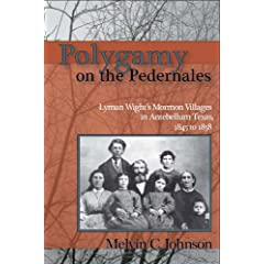 Polygamy on the Pedernales : Lyman Wight's Mormon Village in Antebellum Texas