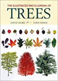 The Illustrated Encyclopedia of Trees by David More, John White