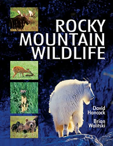 Rocky Mountain Wildlife, David Hancock; Brian Wolitski