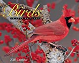 Birds in Your Backyard Calendar: 2005
