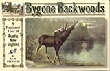 Bygone Backwoods: A Postcard Tour of Rustic New England