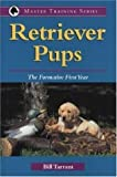 Retriever Pups: The Formative First Year