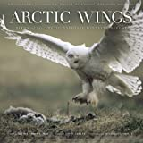 Arctic Wings: Birds of the Arctic National Wildlife Refuge