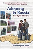 Adopting In Russia: Your Rights and the Law