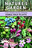 Nature's Garden: A Guide to Identifying, Harvesting, and Preparing Edible Wild Plants, Thayer, Samuel