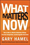 Buy What Matters Now: How to Win in a World of Relentless Change, Ferocious Competition, and Unstoppable Innovation from Amazon