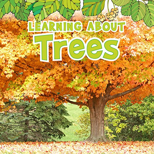 Learning About Trees Veitch Raintree Paperback / softback 9781406266146
