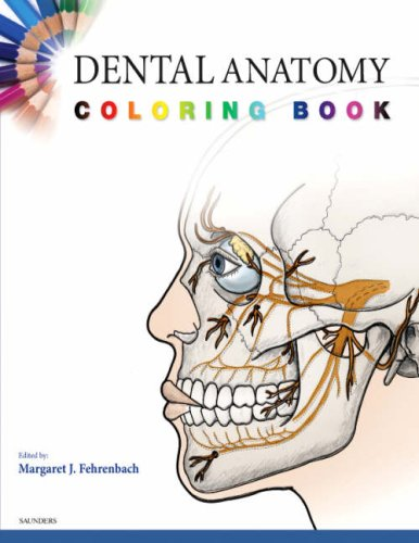 Anatomy Coloring Book For Health Professionals : Anatomy dentistry oral health guides at university
