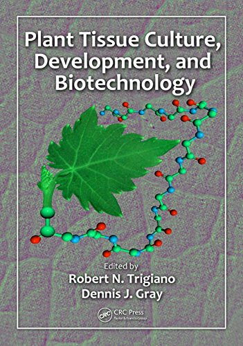Pdf Plant Tissue Culture Development And Biotechnology Free