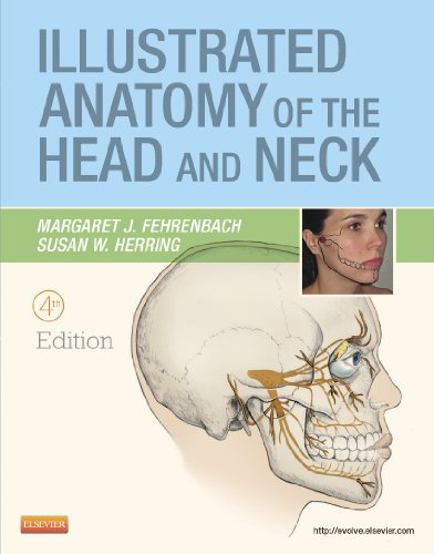 Illustrated Anatomy of the Head and Neck, 4th Edition - Margaret J. Fehrenbach, Susan W. Herring