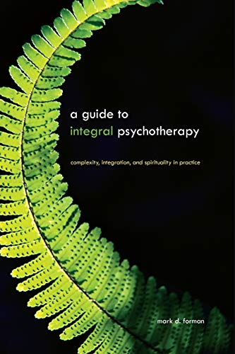 A Guide to Integral Psychotherapy: Complexity, Integration, and Spirituality in Practice (Suny Series in Integral Theory)