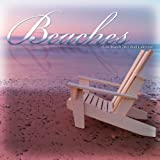 Buy Beaches 2011 Wall Calendar