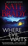 Book Kate Brady  - Where Evil Waits