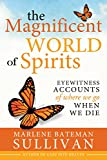 The Magnificent World of Spirit