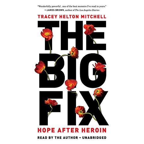 The Big Fix by Tracey Helton Mitchell