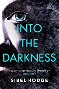 Into the Darkness by Sibel Hodge