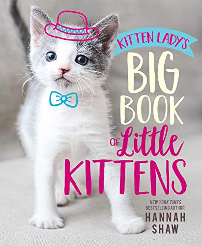 Read Now Kitten Lady's Big Book of Little Kittens
