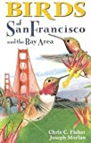 Birds of San Francisco and the Bay Area