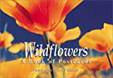 Wildflowers: A Book of Postcards