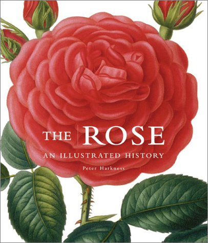 The Rose: An Illustrated History by Peter Harkness