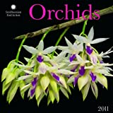 Buy Orchids by Smithsonian Institution 2011 Wall Calendar