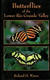 Butterflies of the Lower Rio Grande