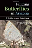 Finding Butterflies in Arizona