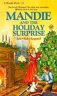 The Holiday Surprise