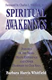Spiritual Awakenings book cover.