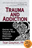 Trauma and Addiction : Ending the Cycle of Pain Through Emotional Literacy