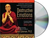 Buy Destructive Emotions: How Can We Overcome Them?: A Scientific Dialogue with the Dalai Lama from Amazon