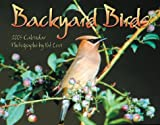Backyard Birds Calendar: 2005