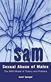 Sexual Abuse of Males: The SAM Model of Theory and Practice