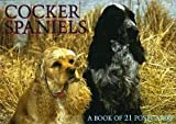 Cocker Spaniels: A Book of 21 Postcards