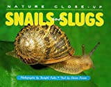 Snails and Slugs (Nature Close-Up)